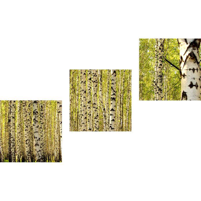 Wandbilder Natur Grün 120x40 Glas 3 Teilig Acryl Bild Acrylglasbilder Wanddeko