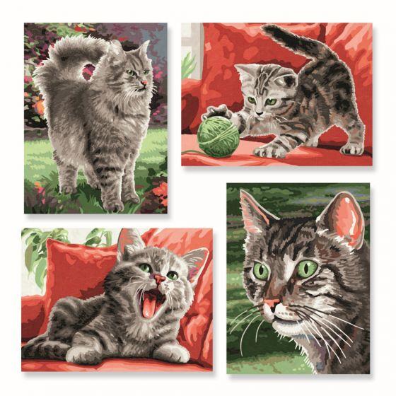 malen nach zahlen erwachsene katze  tier malen