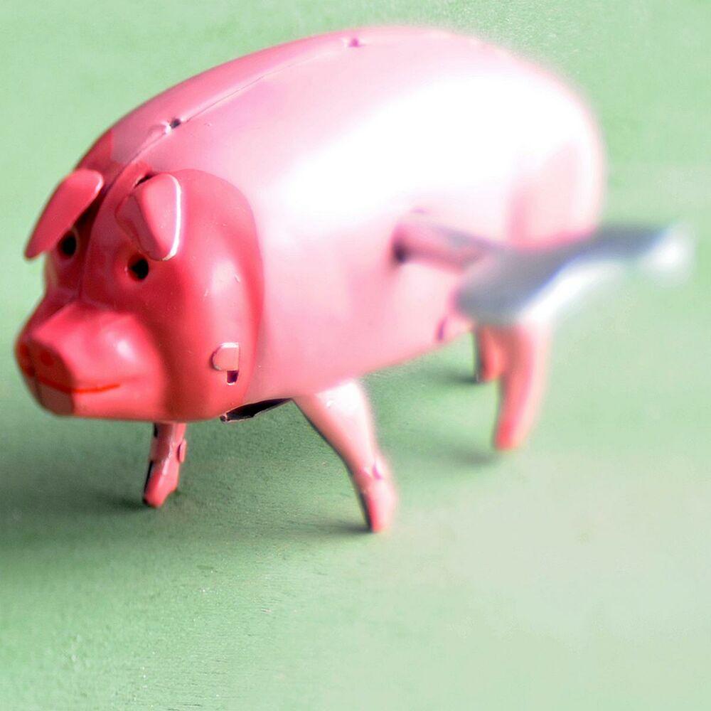 Blechspielzeug Schwein Polly the pig  1817066