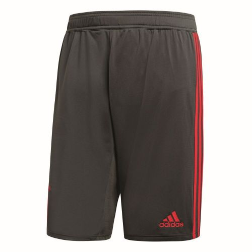 Adidas FC Bayern Munich Football Mens Kids Training Kit 2018 2019 Jersey Shorts