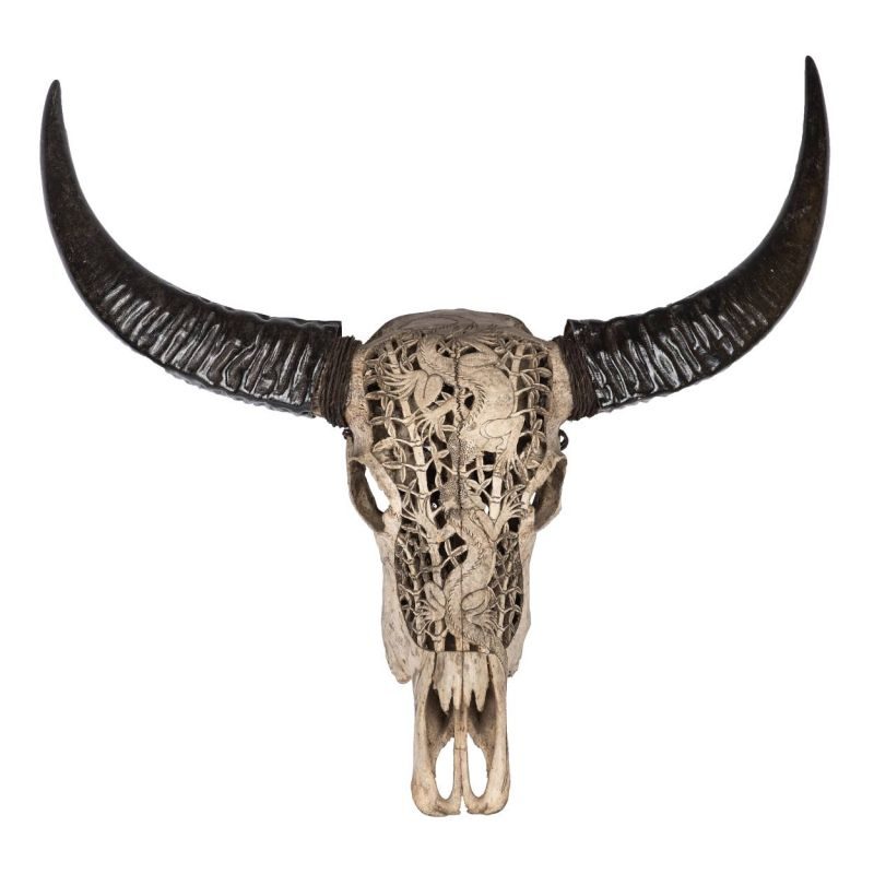 ECHTER Büffel Schädel Longhorn Carving Stierkopf Drache Gothik Bone ...