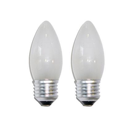 Standard Glühbirnen Glühlampen 25W E27-10 x 25 Watt Industrie Glühlampe klar