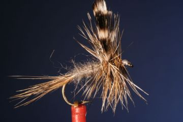 Fliegentom Trockenfliege 3 Stück Olive Adams