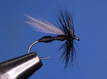 Fliegentom Trockenfliege 3 Stück Schwarze Buckcaddis