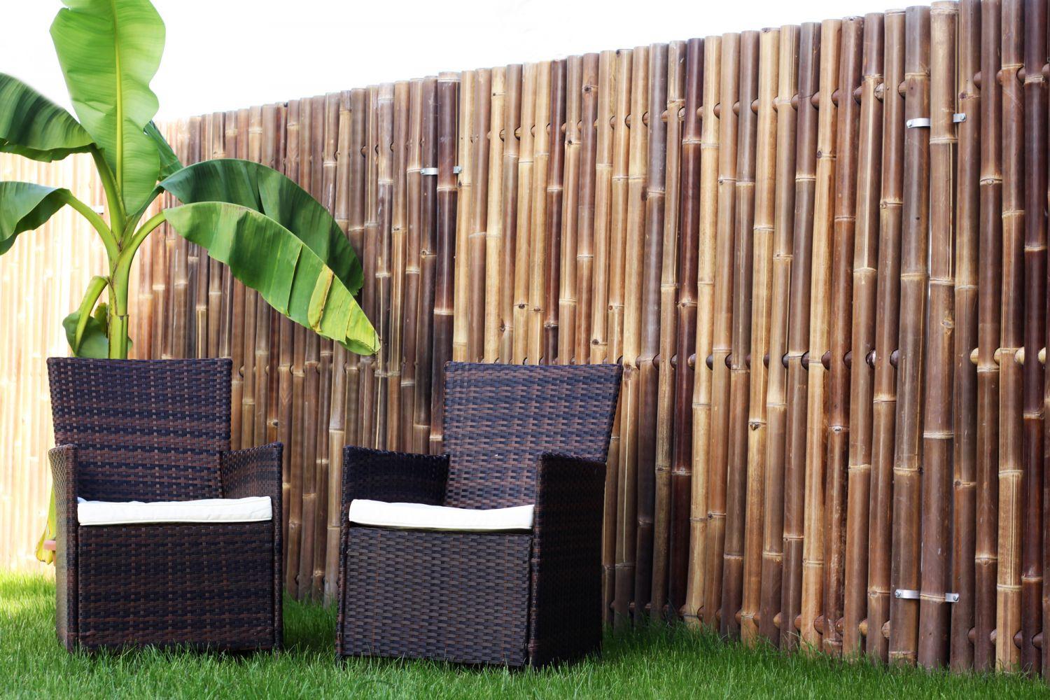 bambus sichtschutz xxl nigra in 4 grossen lieferbar