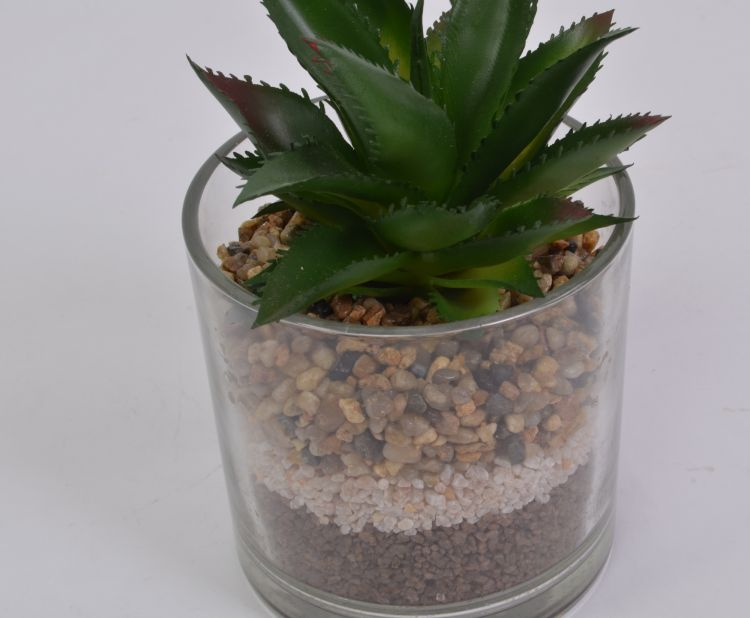 Chiccie Kunstpflanze Mit Sand Im Glas 16cm Kaktus Deko Ebay