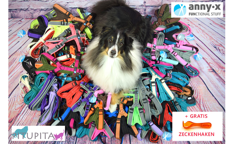 Anny X Chest Tableware Fun Annyx Dog Harness Xxs Xs S M L Xl With Free Gift Ebay