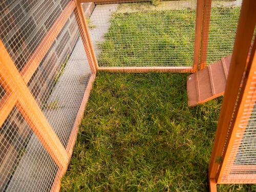 hühnerstall hasenstall xxl kleintierstall mit auslauf