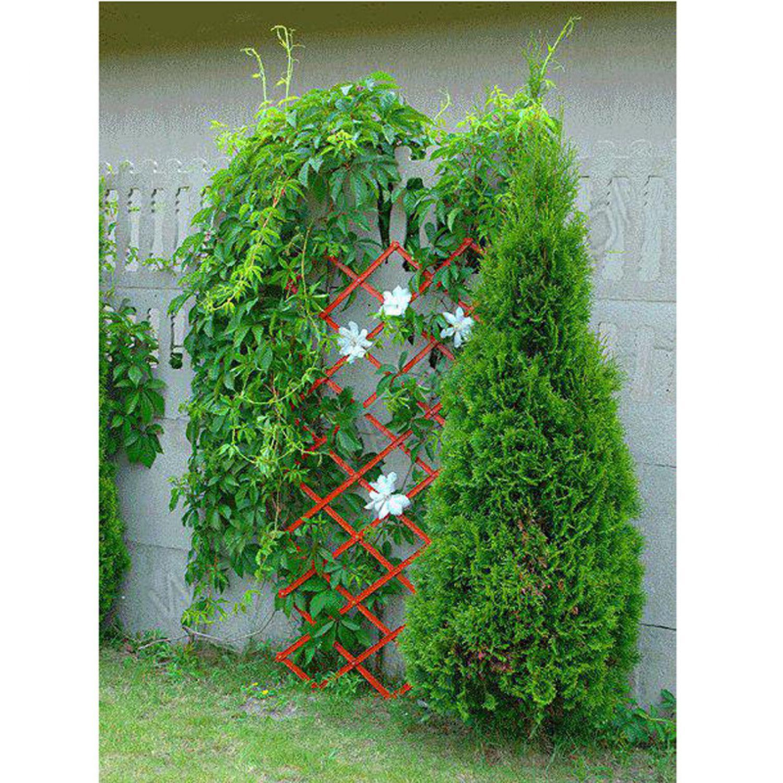 pergola blumen gitter pflanzen blumengitter pflanzengitter rankhilfe wandspalier ebay. Black Bedroom Furniture Sets. Home Design Ideas