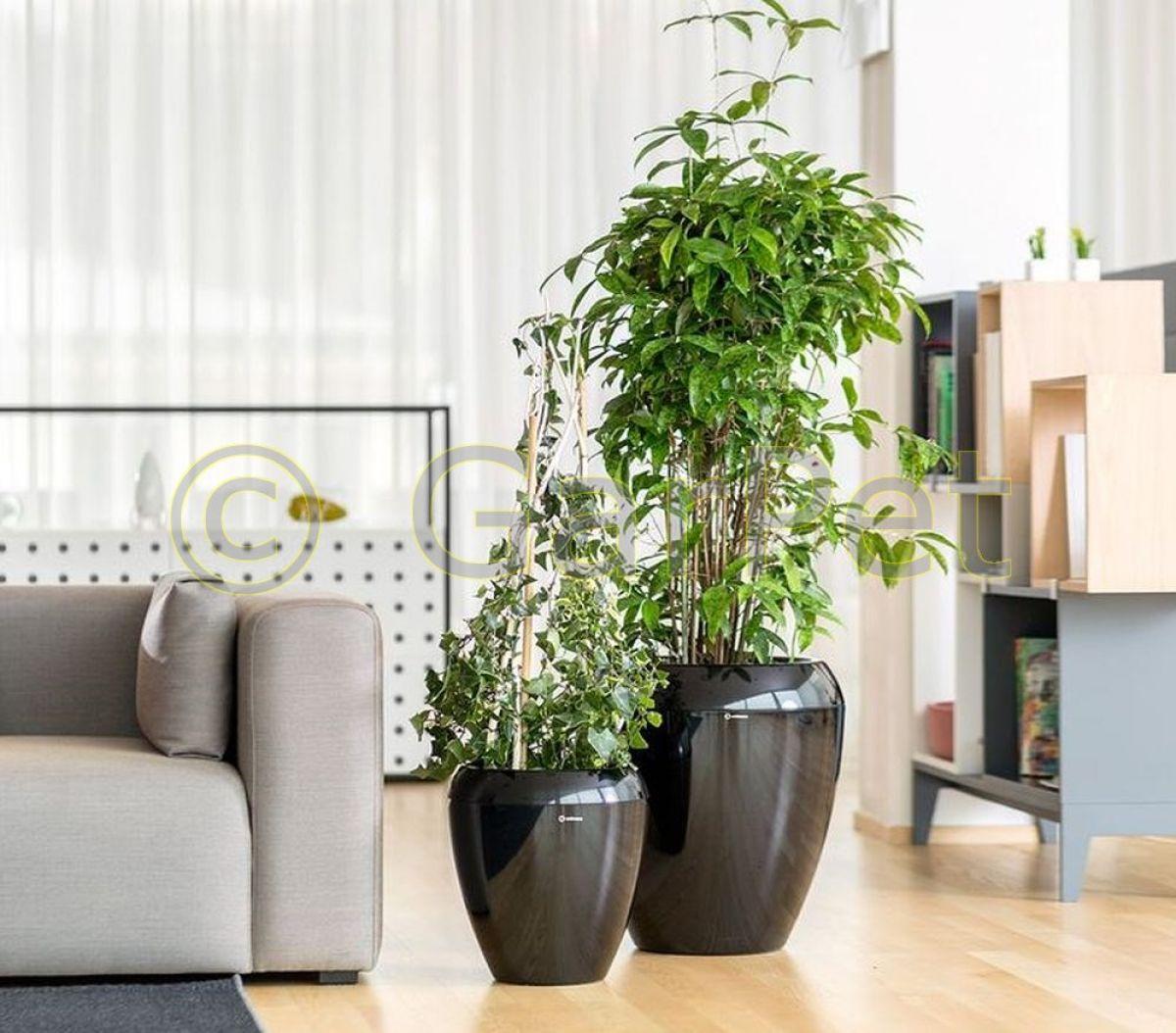 pflanzk bel mit bew sserung calimera innen au en gro pflanz gef blumen topf ebay. Black Bedroom Furniture Sets. Home Design Ideas