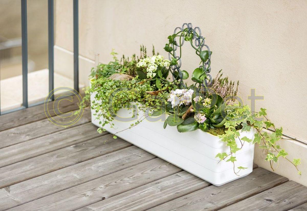 berberis mit bew sserungssystem halterung design blumen balkon kasten gel nder ebay. Black Bedroom Furniture Sets. Home Design Ideas