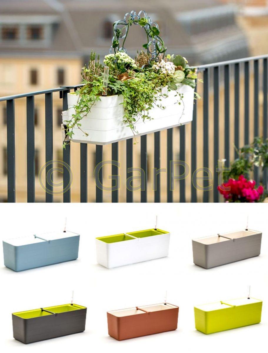 berberis mit bewässerungssystem halterung design blumen balkon