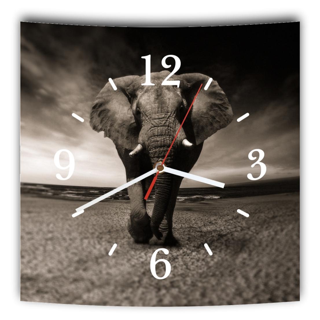 LAUTLOSE Designer Wanduhr mit Spruch Elefant schwarz weiß grau weiß modern Dekos