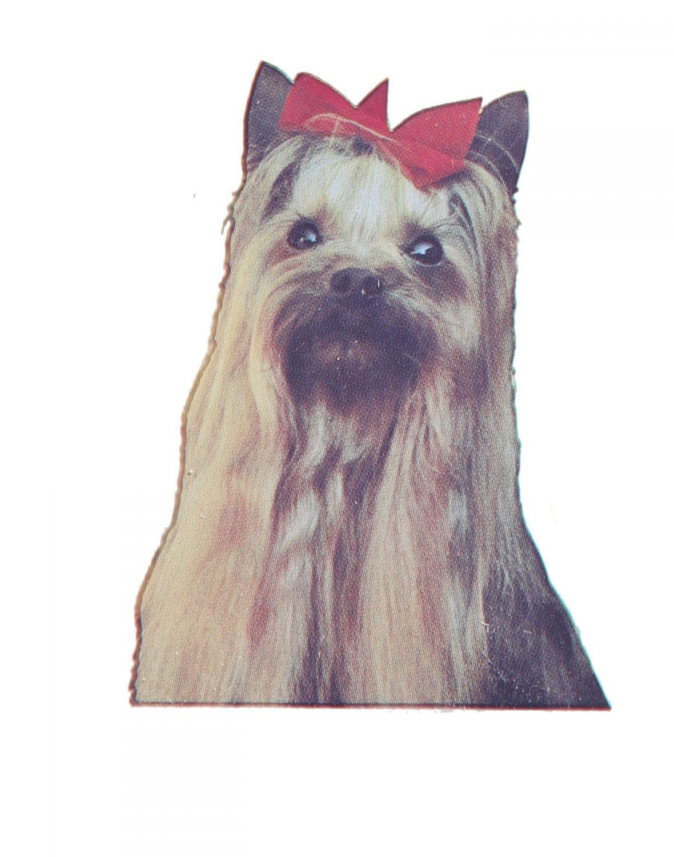 4 Aufkleber Hunde Yorkshire Terrier O531 Ebay