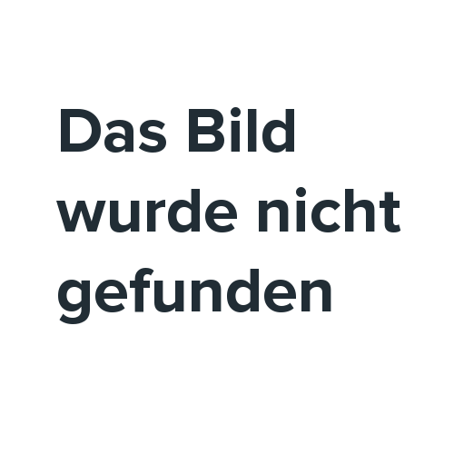 28 Zoll Herren Hollandfahrrad 55 cm Schwarz