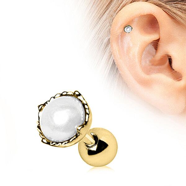 Details zu Perlen Ohrstecker Gold Ohrpiercing Ohrring Schmuck Für Helix Tragus Cartilage