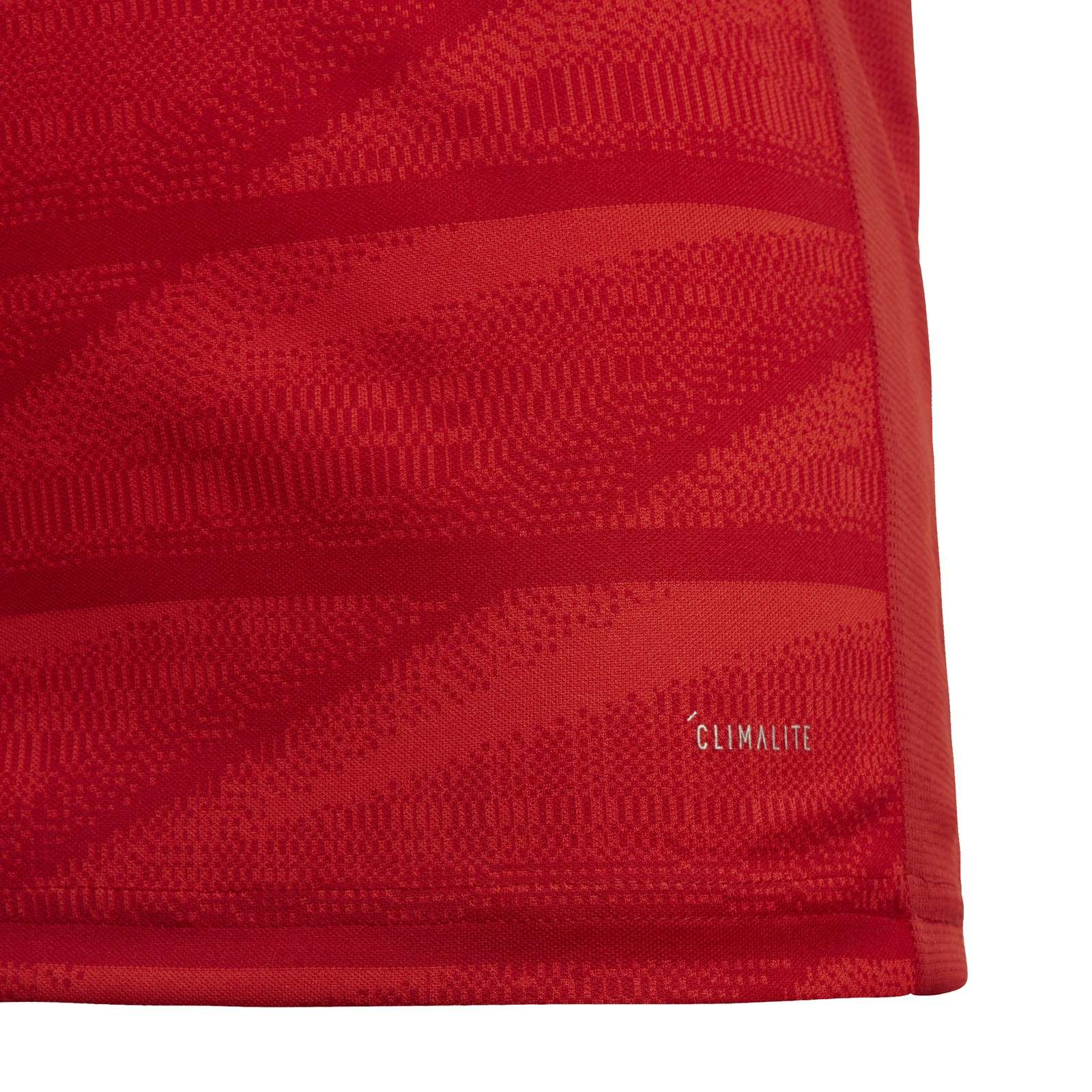 adidas-FC-Bayern-Muenchen-Heimtrikot-Kinder-2019-2020-Home-Jersey-rot-DX9253 Indexbild 23